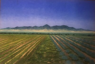 Abelardo López, 'paisaje del valle de Tlacolula', 2008