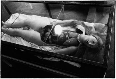 Zoe Leonard, 'Wax Anatomical Model, full view from above', 1990