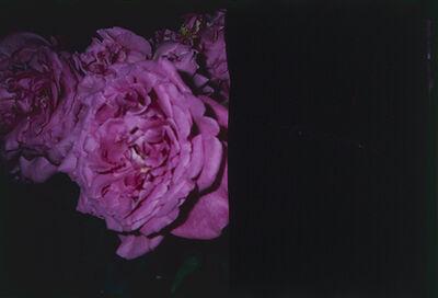 "Nobuyoshi Araki, '""Love on the Left Eye""', 2014"