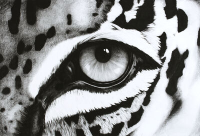 Rose Corcoran, '10. Black and White Abstract Leopard Eye', 2018