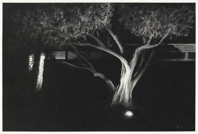 Bruce Kimerer, 'Outside', 2018