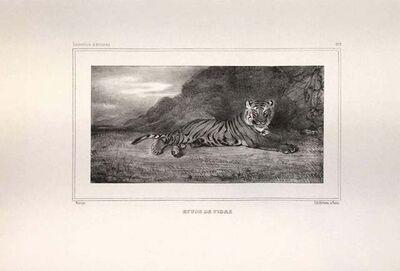 Antoine-Louis Barye, 'Etude de Tigre', 1832