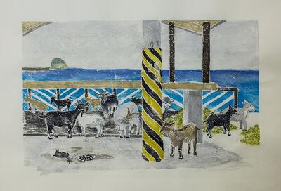 Yi Hsuan Hsu, 'Koto Island series: Hiding lambs ', 2018