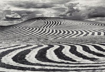 Dan Kirby, 'Untitled (Plowed Field)'