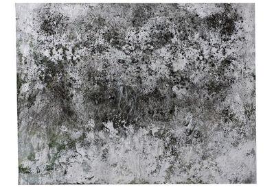 Bobbie Moline-Kramer, 'Landscapes - Silvered Black Trace', 2013