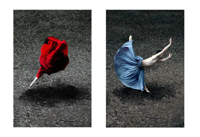 Guilherme Licurgo, 'Desert Rose and Booming Flower II Diptych (Color Figurative Photography) ', 2014