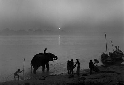 Don McCullin, 'Elephant Festival, the River Gandak, India', 1991