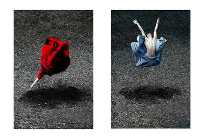 Guilherme Licurgo, 'Desert Rose and Booming Flower I Diptych (Color Figurative Photography)', 2014