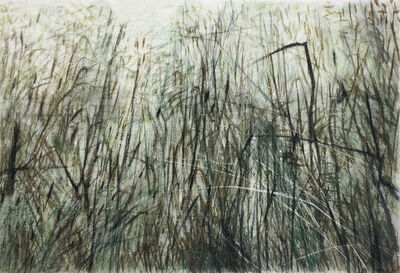 Wang Gongyi, 'Leaves of Grass No.6', 2019