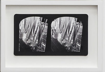 Penelope Stewart, 'Ruin Gazing Vol 1, paradise gardens - No: 030 - Ghost Tools, framed stereoscopic cards created by artist', 2015