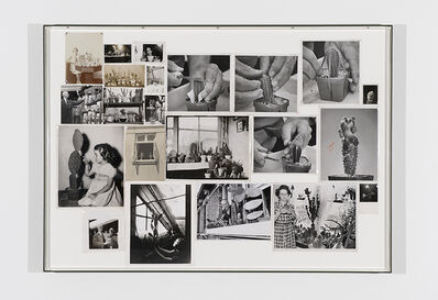 Yann Sérandour, 'Cactus Cuttings #2', 2014