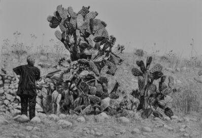 Samah Shihadi, 'Cactus Harvest #2', 2017