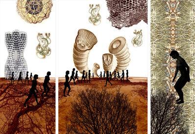 Sonia Mehra Chawla, 'Transitory Shores & Biomorphic Daydreams', 2013