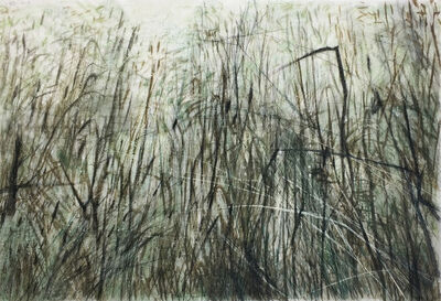 Wang Gongyi, 'Leaves of Grass No. 6', 2019
