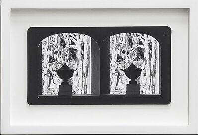 Penelope Stewart, 'Ruin Gazing Vol 1, paradise gardens - No: 011 - Urn and Euphorbias, Lotusland, framed stereoscopic cards created by artist', 2015