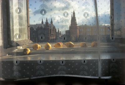 Sam Abell, 'Pears, Moscow'
