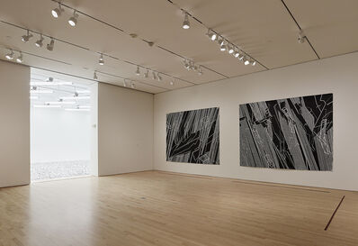 "'Installation view ""Field Conditions"", 2012'"