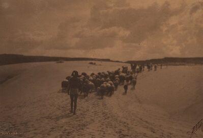 Edward Sheriff Curtis, 'Hopi Boy Herding Sheep', 1905