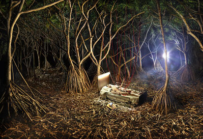 David LaChapelle, 'Reborn! Nature's Transfusion', 2014