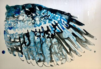 Mark Adams, 'Blue Jay Wing', 2019