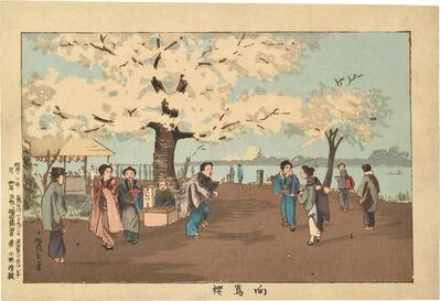 Kobayashi Kiyochika 小林清親, 'Cherry Blossom, Mukojima ', ca. 1880