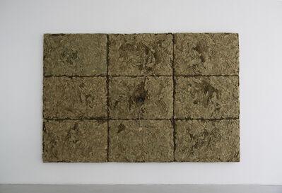 Giuseppe Penone, 'RESPIRARE L'OMBRA', 2006