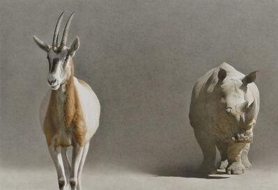 Marzio Tamer, 'Descent from the Ark'