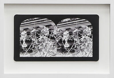 Penelope Stewart, 'Ruin Gazing Vol 1, paradise gardens - No: 024 - Balusters at Casa Loma, framed stereoscopic cards created by artist', 2015
