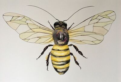 Idoline Duke, 'Mighty Honeybee', 2019
