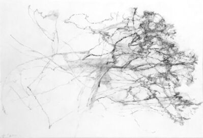 Alexandre Hollan, ' Le buisson ardent', 2009