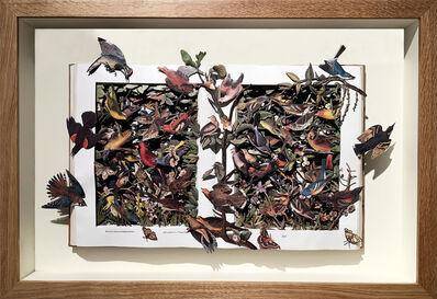 Kerry Miller, 'AUDUBON'S BIRDS OF NORTH AMERICA', 2019
