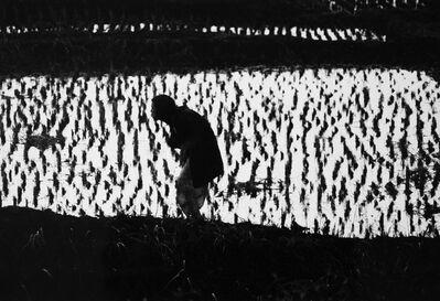 Eikoh Hosoe, 'Kamaitachi #35', 1968-vintage print