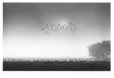 Michael Kenna, 'Fifty Five Birds, Wolverton, Buckinghamshire, England', 1991