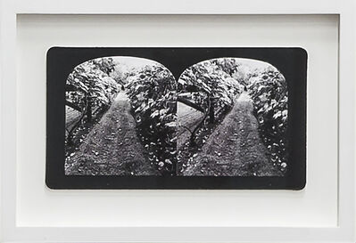Penelope Stewart, 'Ruin Gazing Vol 1, paradise gardens - No: 017 - Vines at Spadina House, framed stereoscopic cards created by artist', 2015