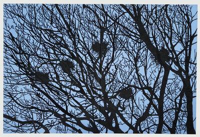 Xavi Muñoz, 'Nests', 2011