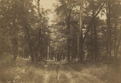 Gustave Le Gray, 'Bas-Bréau, Forest of Fontainebleau', 1849-1852
