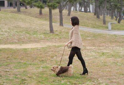 "Aki Inomata, '""I Wear the Dog's Hair, and the Dog Wears My Hair ""', 2014/2017"