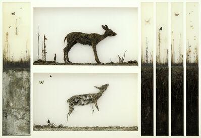 Enzo Fiore, '  Tavola Biologica N 1', 2015