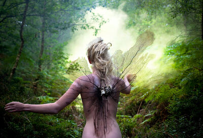 Kirsty Mitchell, 'The Distant Pull of Remembrance ', 2012