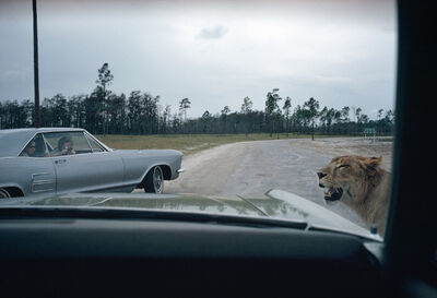 Joel Meyerowitz, 'From the Car, Florida', 1970