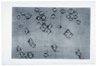 Ann Hamilton, 'warp & weft II', 2007