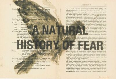 William Kentridge, 'A Natural History of Fear'