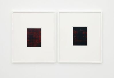 Anthony Pearson, 'Untitled (Color Reflections, diptych)', 2009
