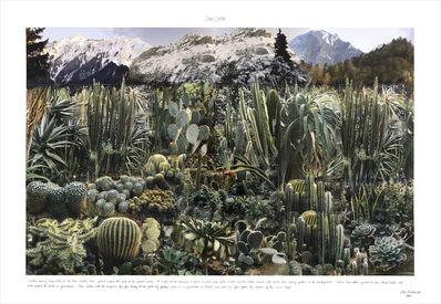 Peter Arthur Hutchinson, 'Swiss Cactus', 1993