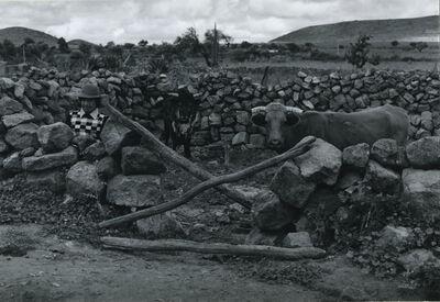 Antonio Reynoso, 'Rural Scene with Bulls and Peasant', ca. 1975