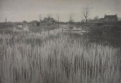 P. H. Emerson, 'A Rushy Shore', 1886