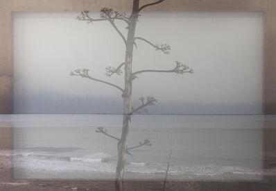 Joan Ill, 'Mediterran A', 2018
