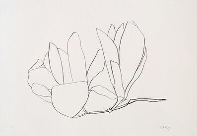 Ellsworth Kelly, 'Magnolia', 1965-1966