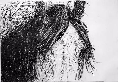 Alysa Bennett, 'Portrait of Ahab', ca. 2012