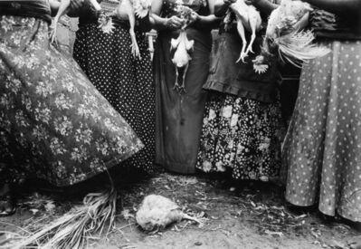 Graciela Iturbide, 'Limpia de Pollos, Juchitán, Oaxaca, Mexico', 1986